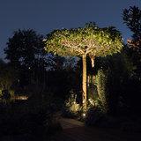 Tuinspot boom uitlichten