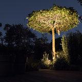 Boom verlicht tuinspot