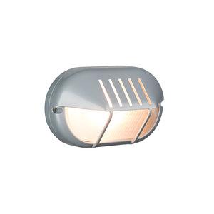 Bulleye buitenlamp zilver 230 volt aluminium