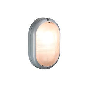 LED Bulleye buiten wandlamp zilver 230v